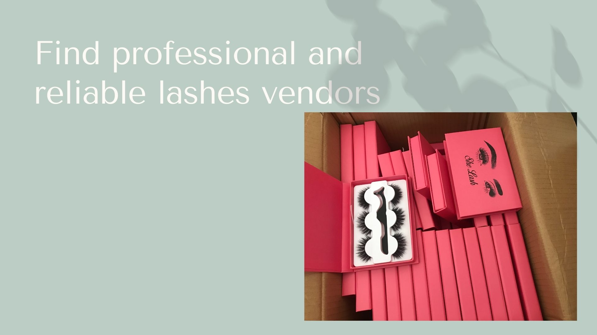 Find professional and reliable lashes vendors